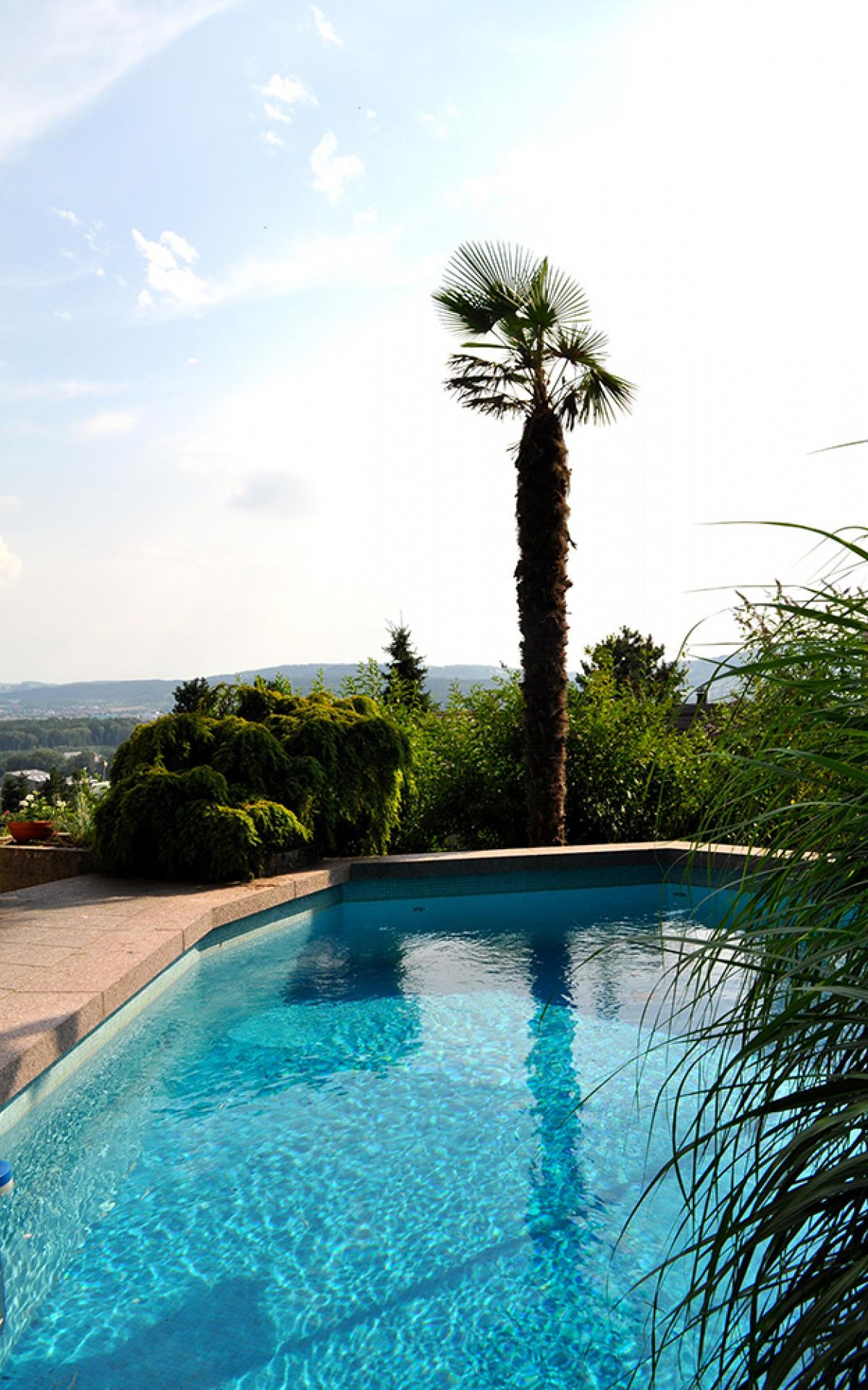 7 zimmer einfamilienhaus mit pool referenzen marisol garcia borkheim immobilien. Black Bedroom Furniture Sets. Home Design Ideas